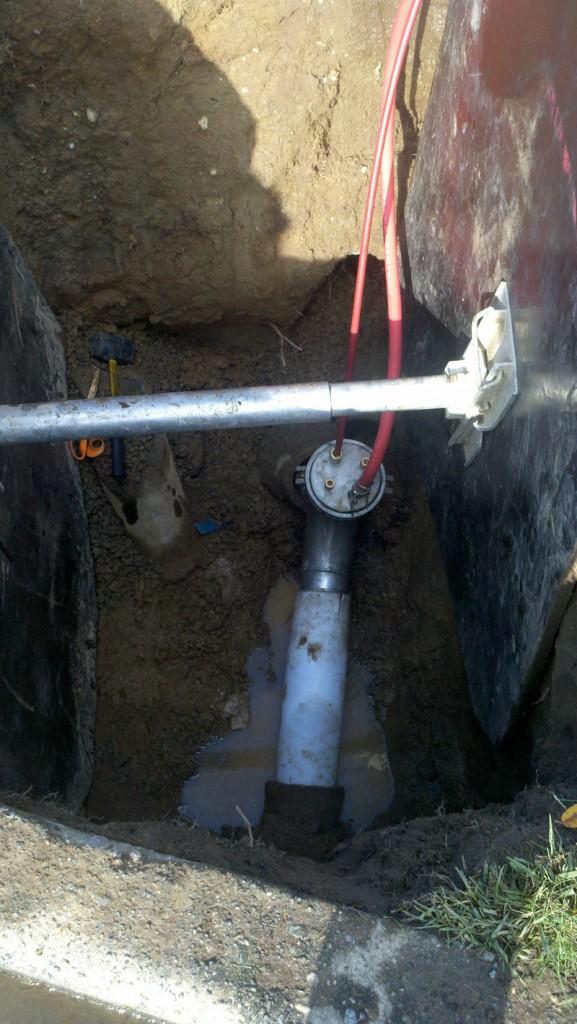Seattle Hot Water Cure